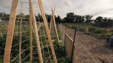 Garden Video 1